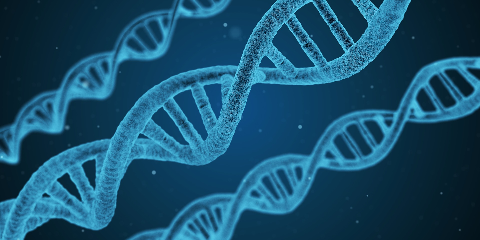 Should scientists be able to modify human genes?